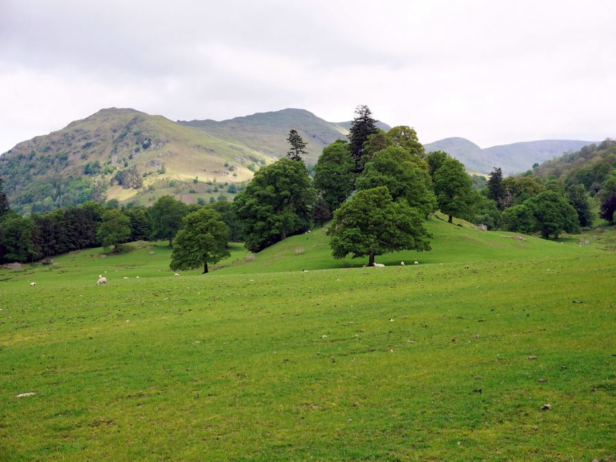 Starting up from Rydal on the Fairfield Horseshoe walk