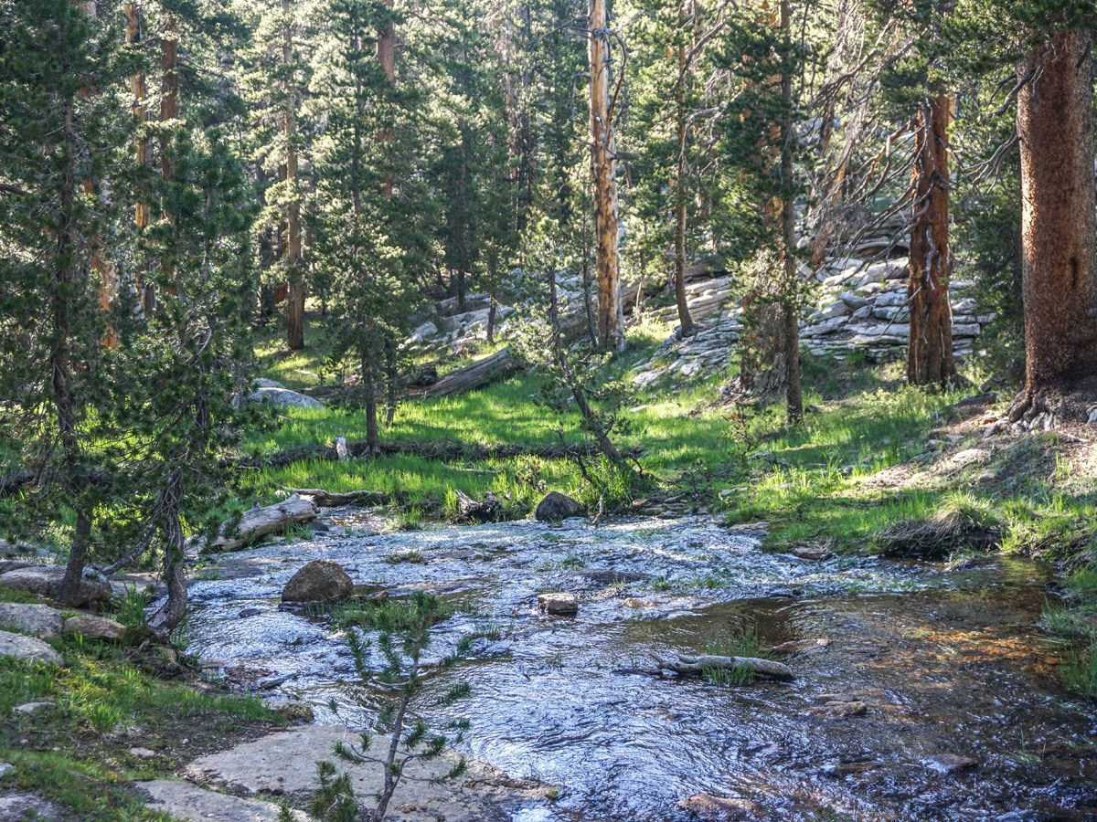 River along the Lembert Dome Hike in Yosemite National Park, California