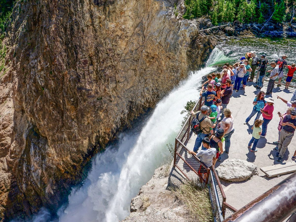 People near falls on Brink of the Lower Falls Hike in Yellowstone National Park