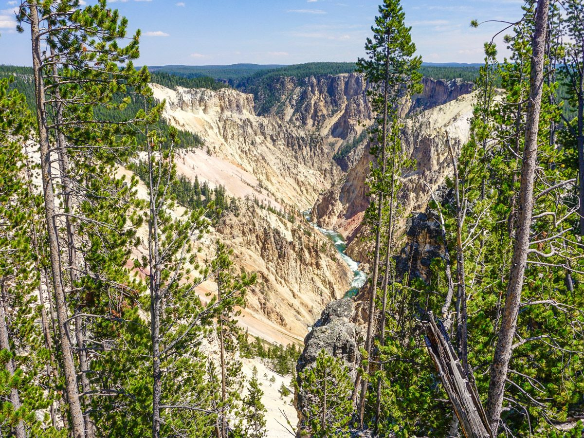 Panorama of the Great view of the Brink of the Lower Falls Hike in Yellowstone National Park