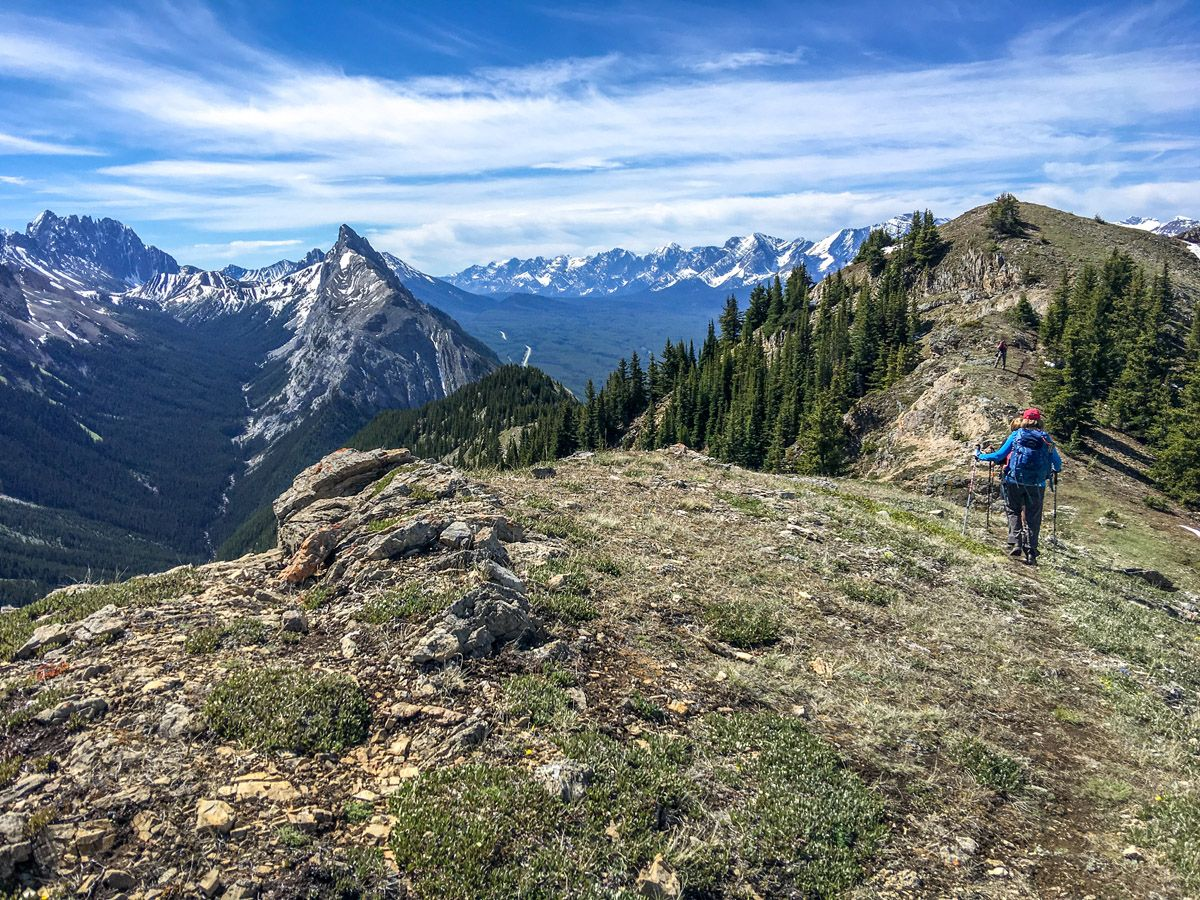 King Creek Ridge Hike in Kananaskis, near Canmore