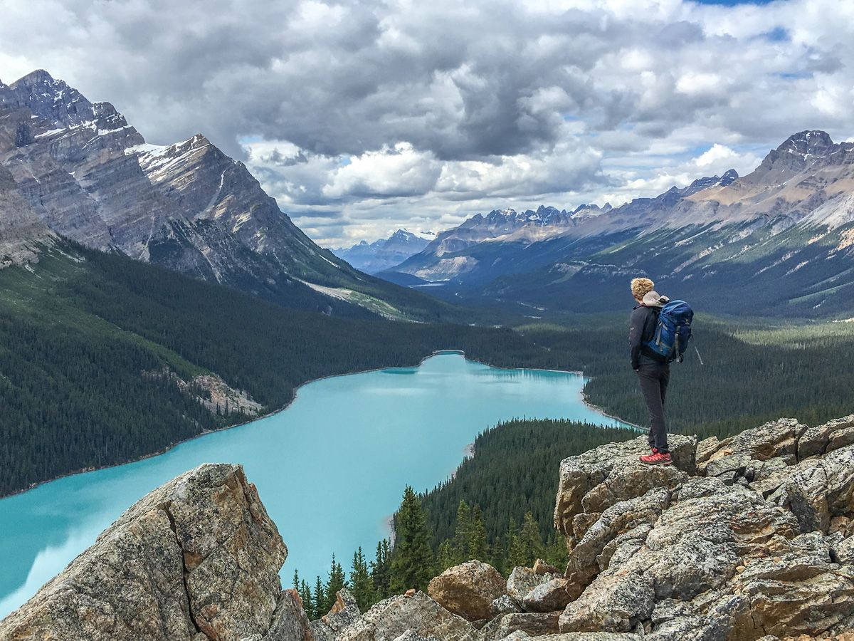 Peyto Lake Viewpoint trail is one of the best hikes along Icefields Parkway