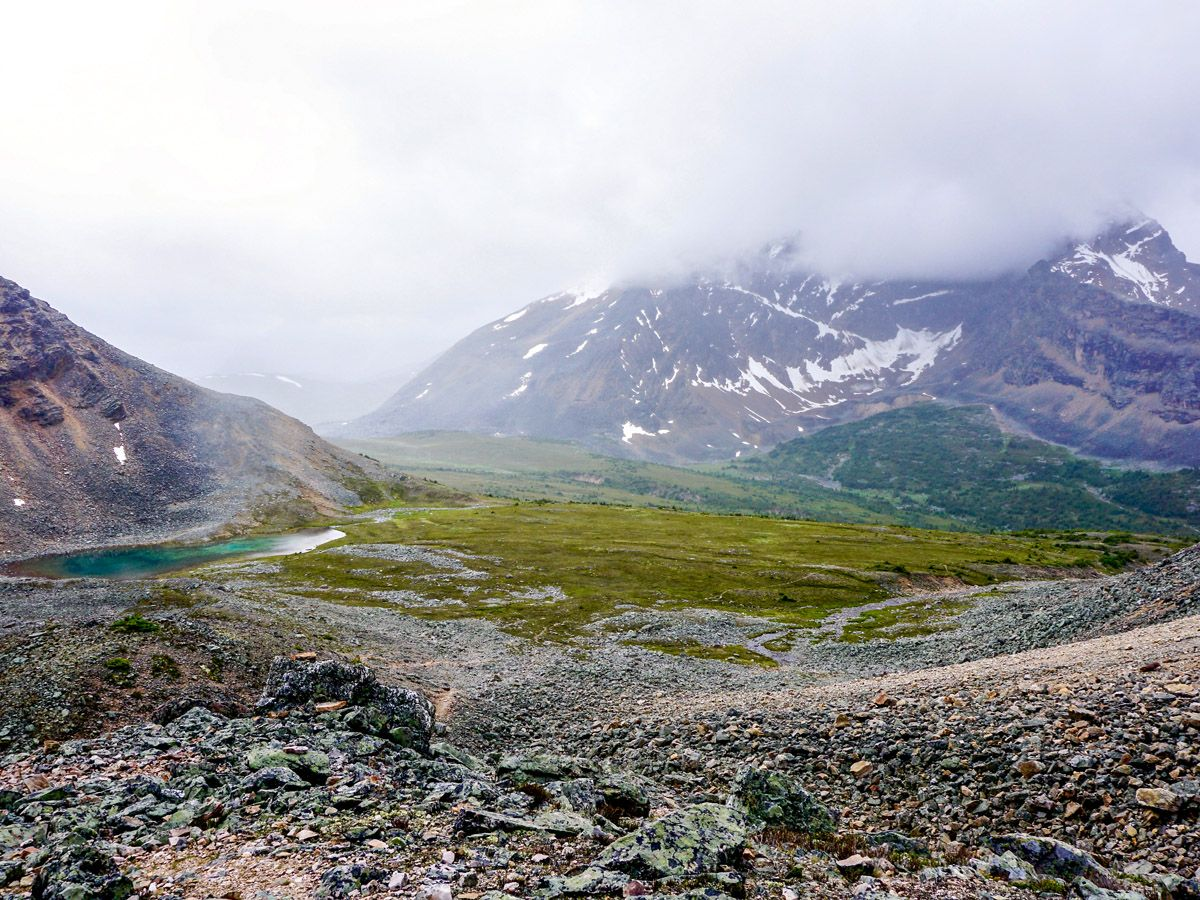 Verdant Pass trail is one of the top hikes in Jasper National Park