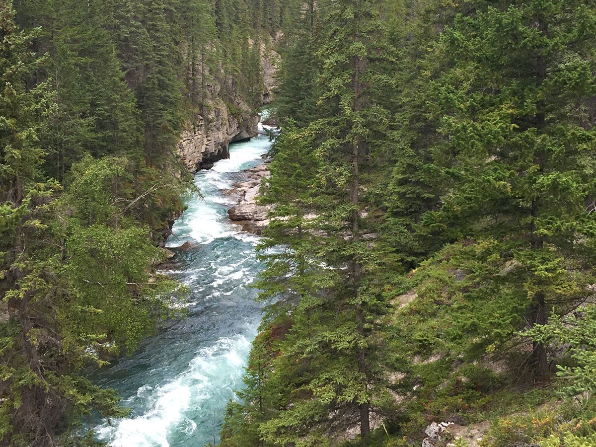 Blue water river on the Maligne Canyon Hike in Jasper National Park, Alberta