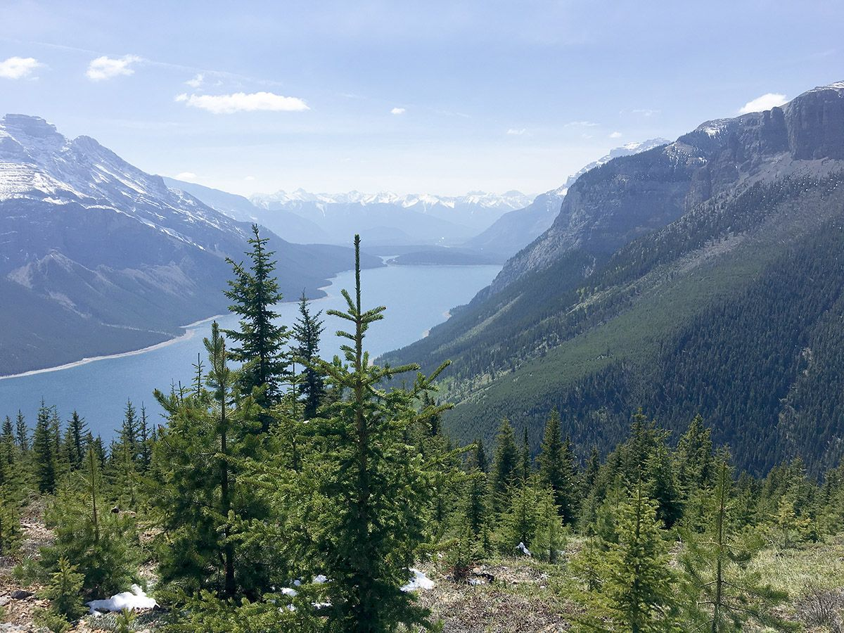 Views from the lookout on the Aylmer Lookout via Lake Minnewanka Hike near Banff