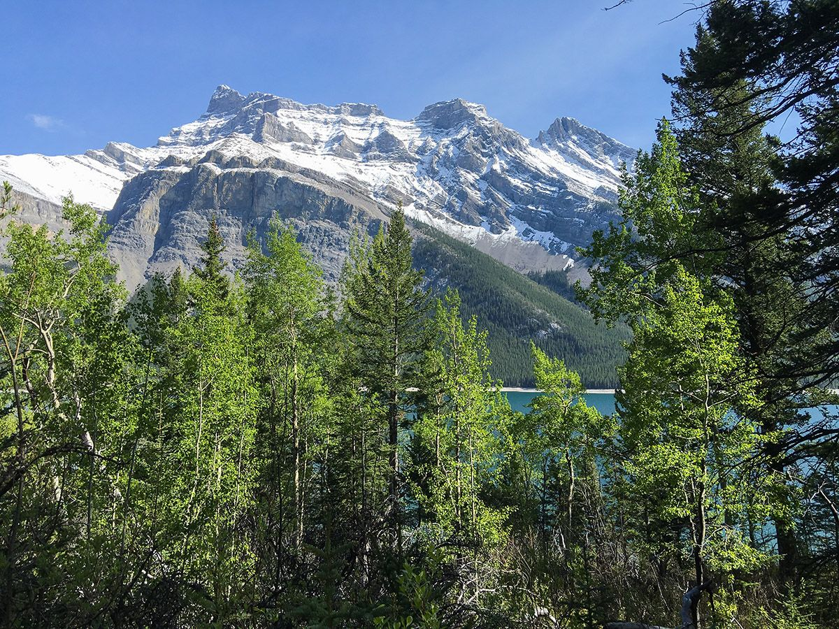 Mountains from the Aylmer Lookout via Lake Minnewanka Hike near Banff