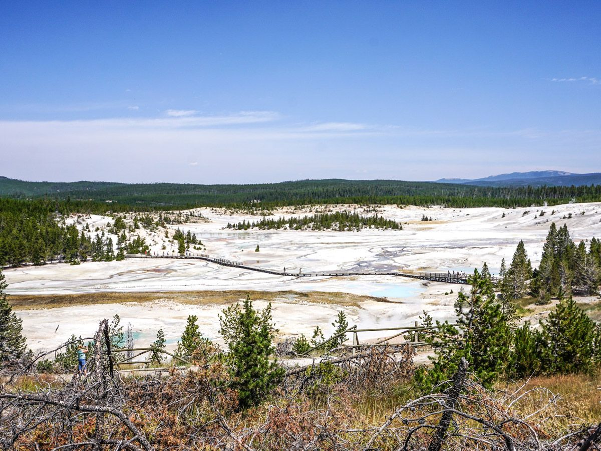 Trail at Norris Geyser Hike in Yellowstone National Park, Wyoming
