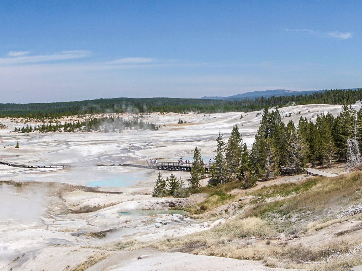 Trail of Norris Geyser Hike in Yellowstone National Park