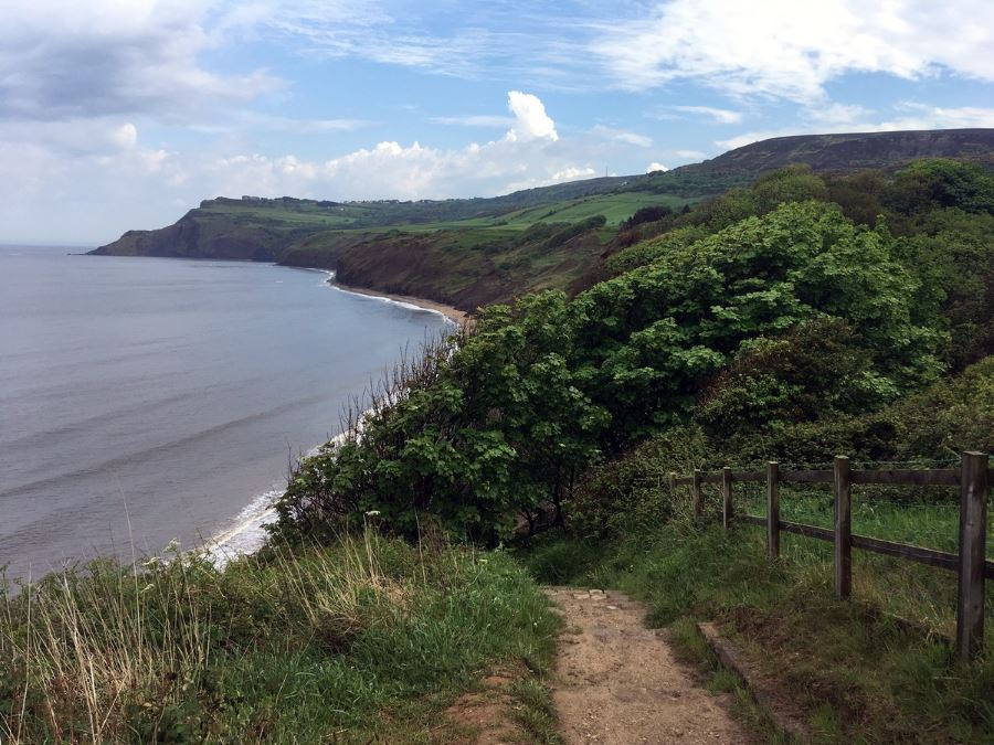 View back towards Ravenscar