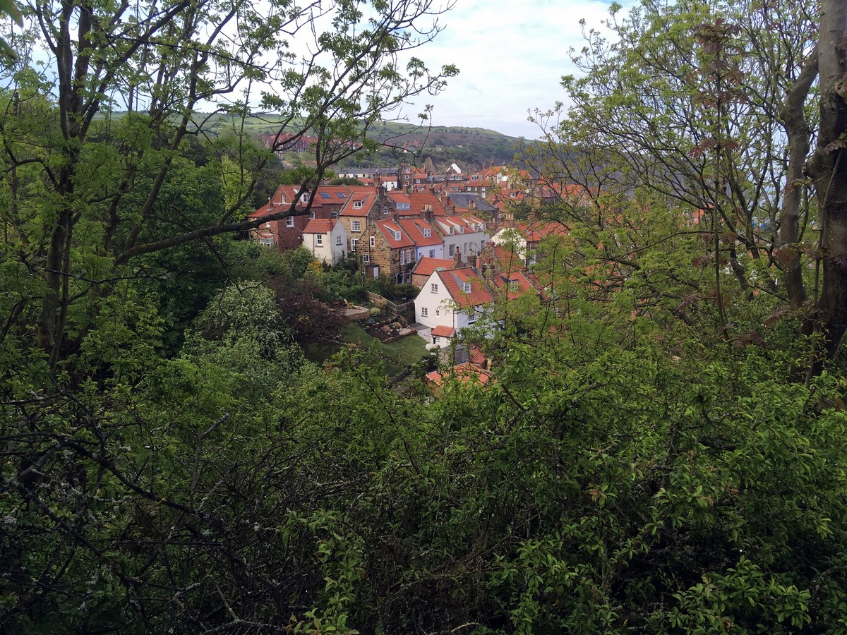 Red roofs from the Ravenscar and Robin Hood's Bay Hike in North York Moors, England
