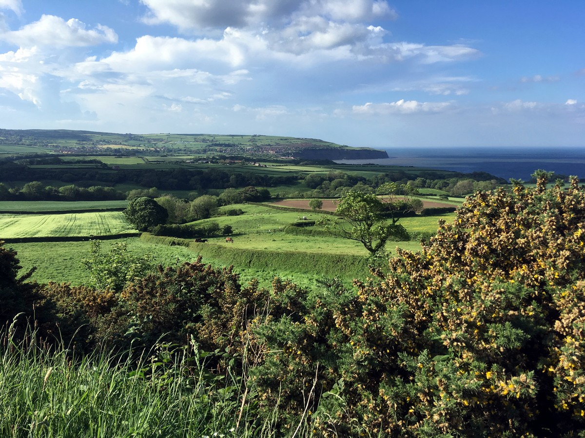 Views from the old railway on the Ravenscar and Robin Hood's Bay Hike in North York Moors, England