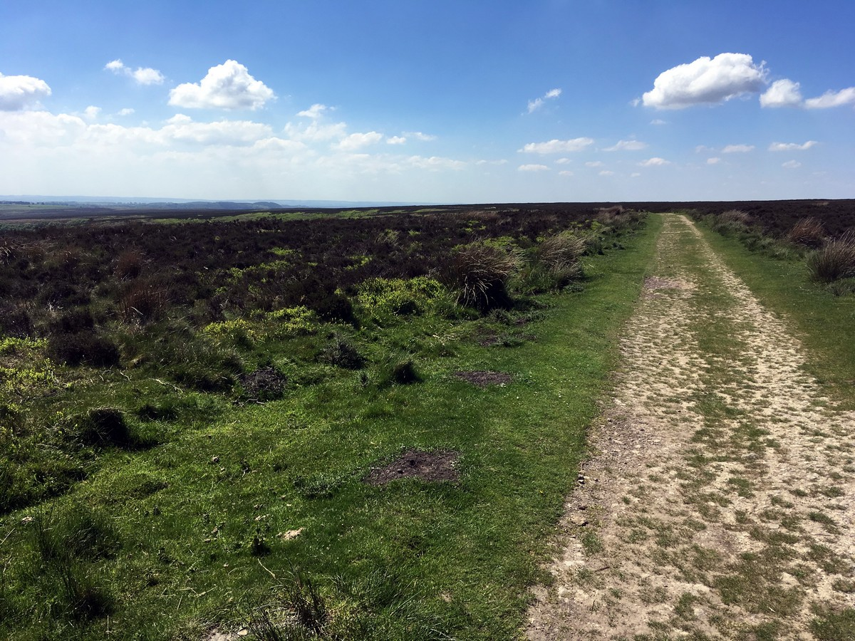 Levisham Moor from the Hole of Horcum Hike in North York Moors, England