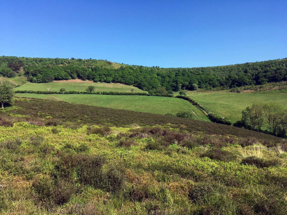 Views from Levisham Moor on the Hole of Horcum Hike in North York Moors, England