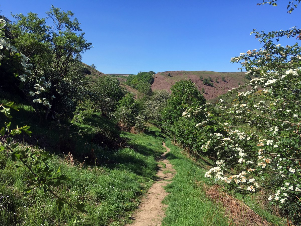 Trail of the Hole of Horcum Hike in North York Moors, England