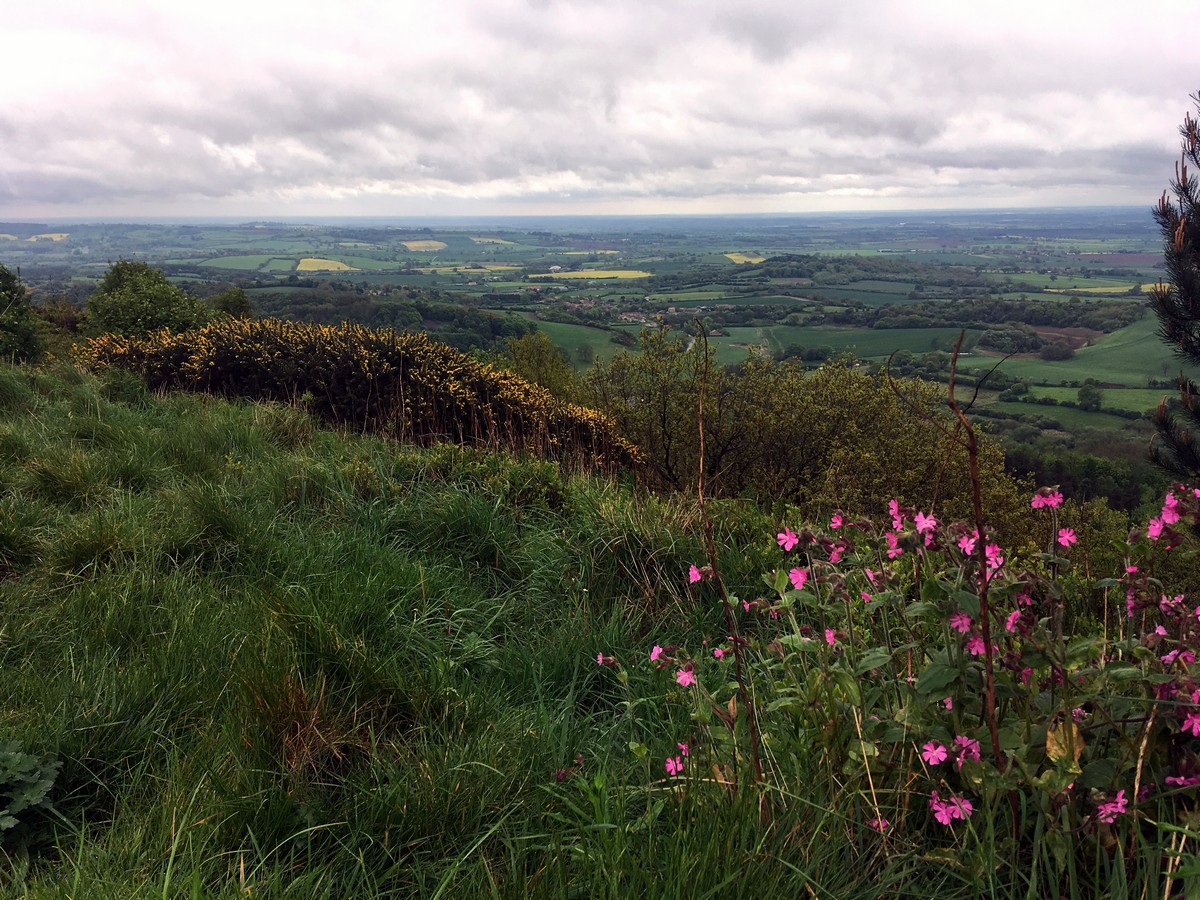 Vale of Pickering on the Sutton Bank, White Horse of Kilburn and Gormire Lake Hike in North York Moors, England