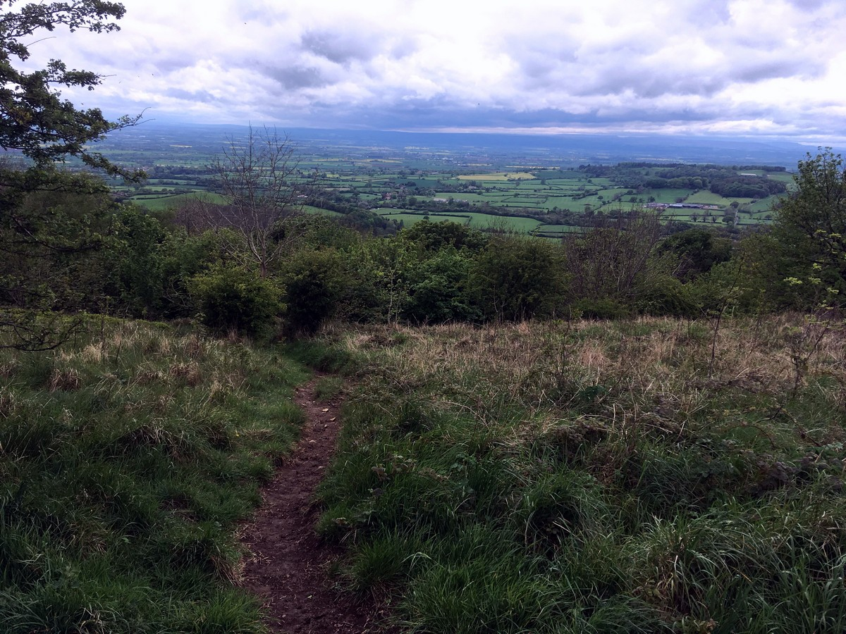 South Woods on the Sutton Bank, White Horse of Kilburn and Gormire Lake Hike in North York Moors, England