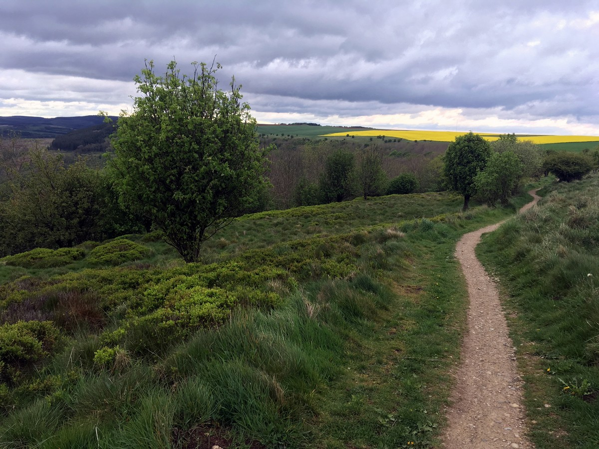 Cleveland Way on the Sutton Bank, White Horse of Kilburn and Gormire Lake Hike in North York Moors, England