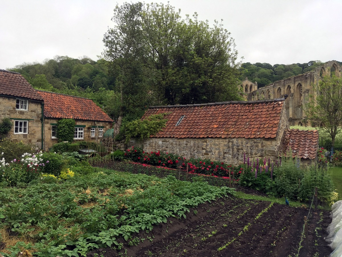 Helmsley to Rievaulx Abbey Hike in North York Moors is surrounded by beautiful authentic houses