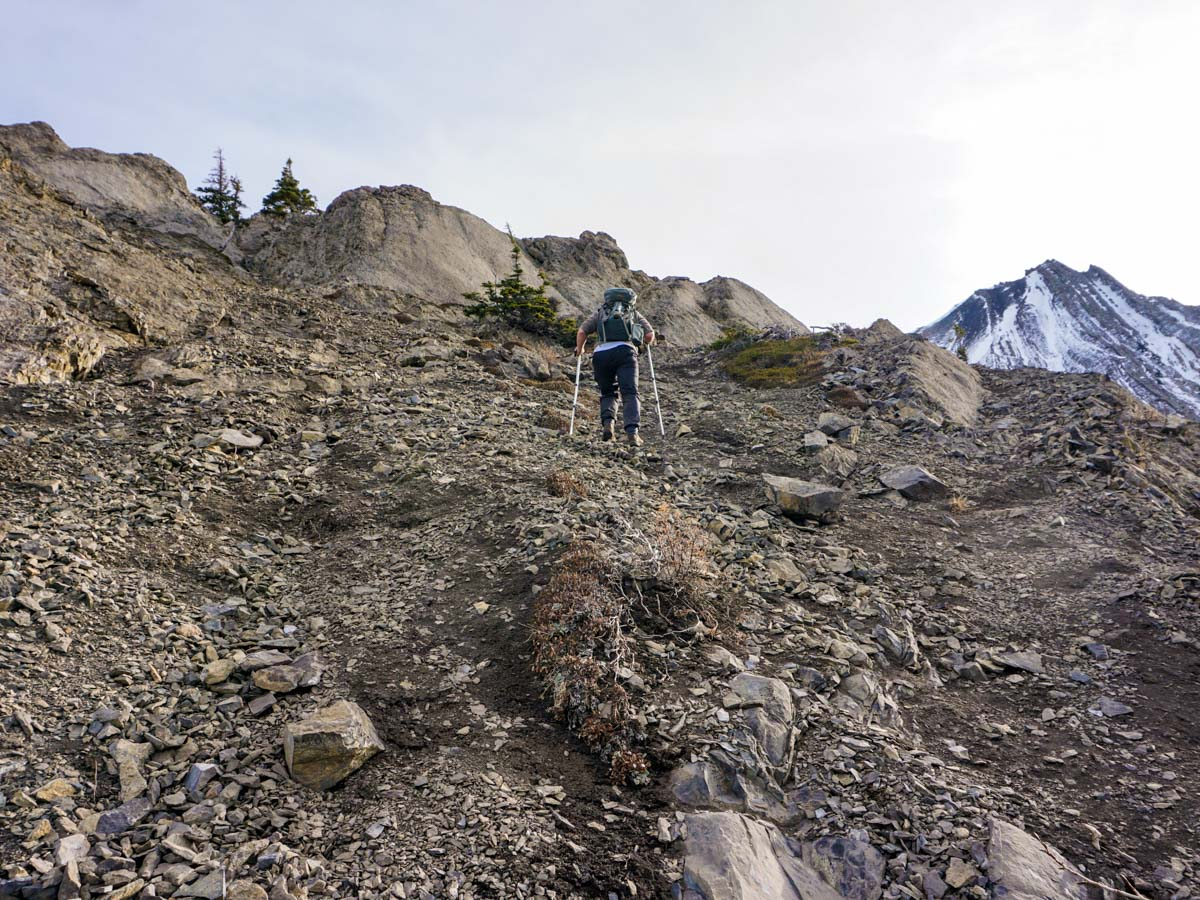The steep path of the Opal Ridge Hike in Kananaskis, near Canmore