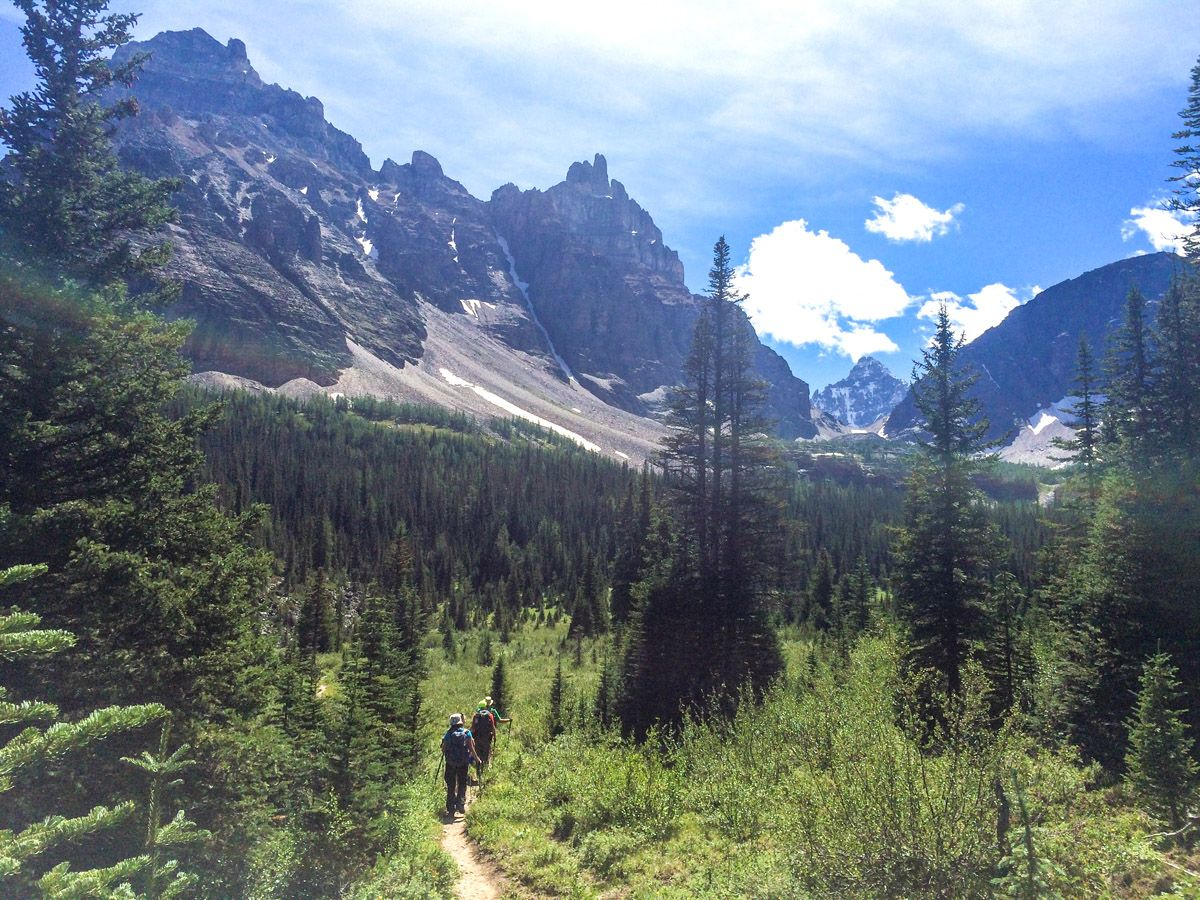 Trail of the Paradise Valley Circuit Hike in Lake Louise, Banff National Park