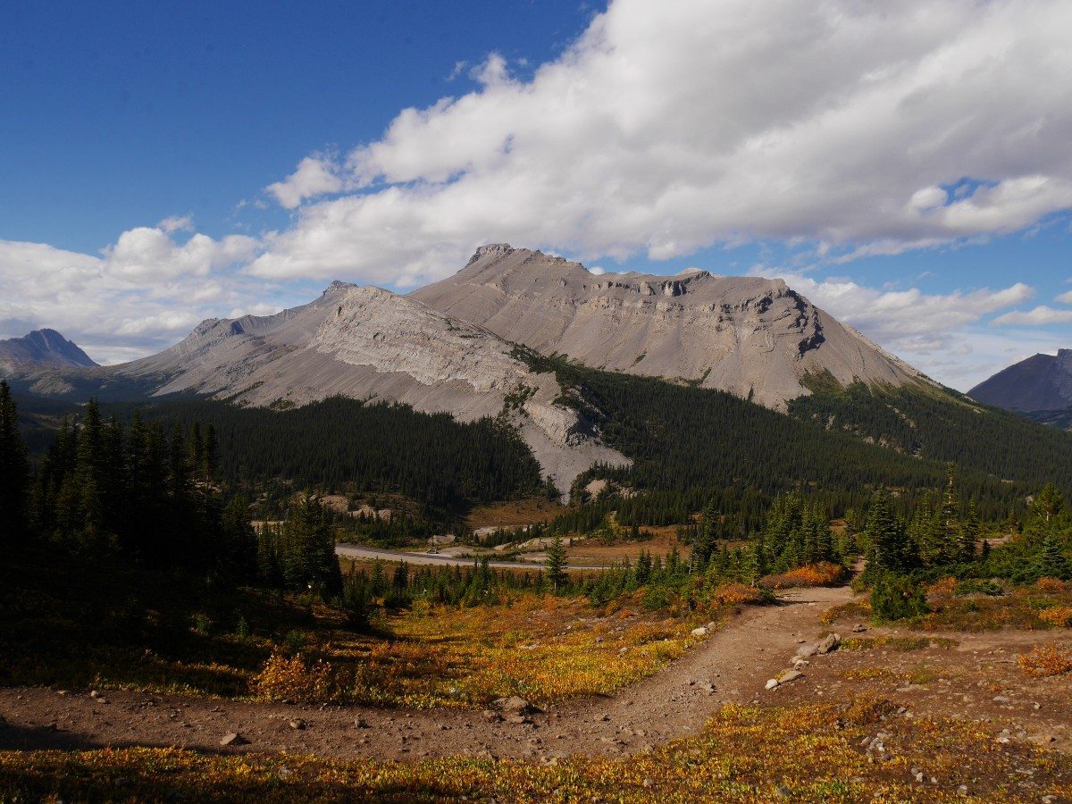 Nigel Peak on the Parker Ridge Trail Hike from the Icefields Parkway near Banff National Park