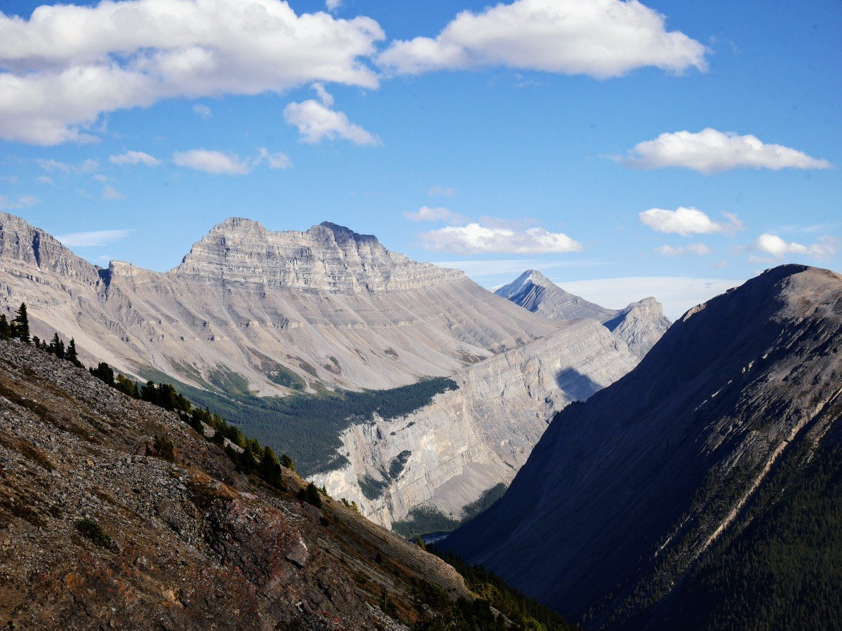Cirrus Mountain view on the Parker Ridge Trail Hike from the Icefields Parkway near Banff National Park