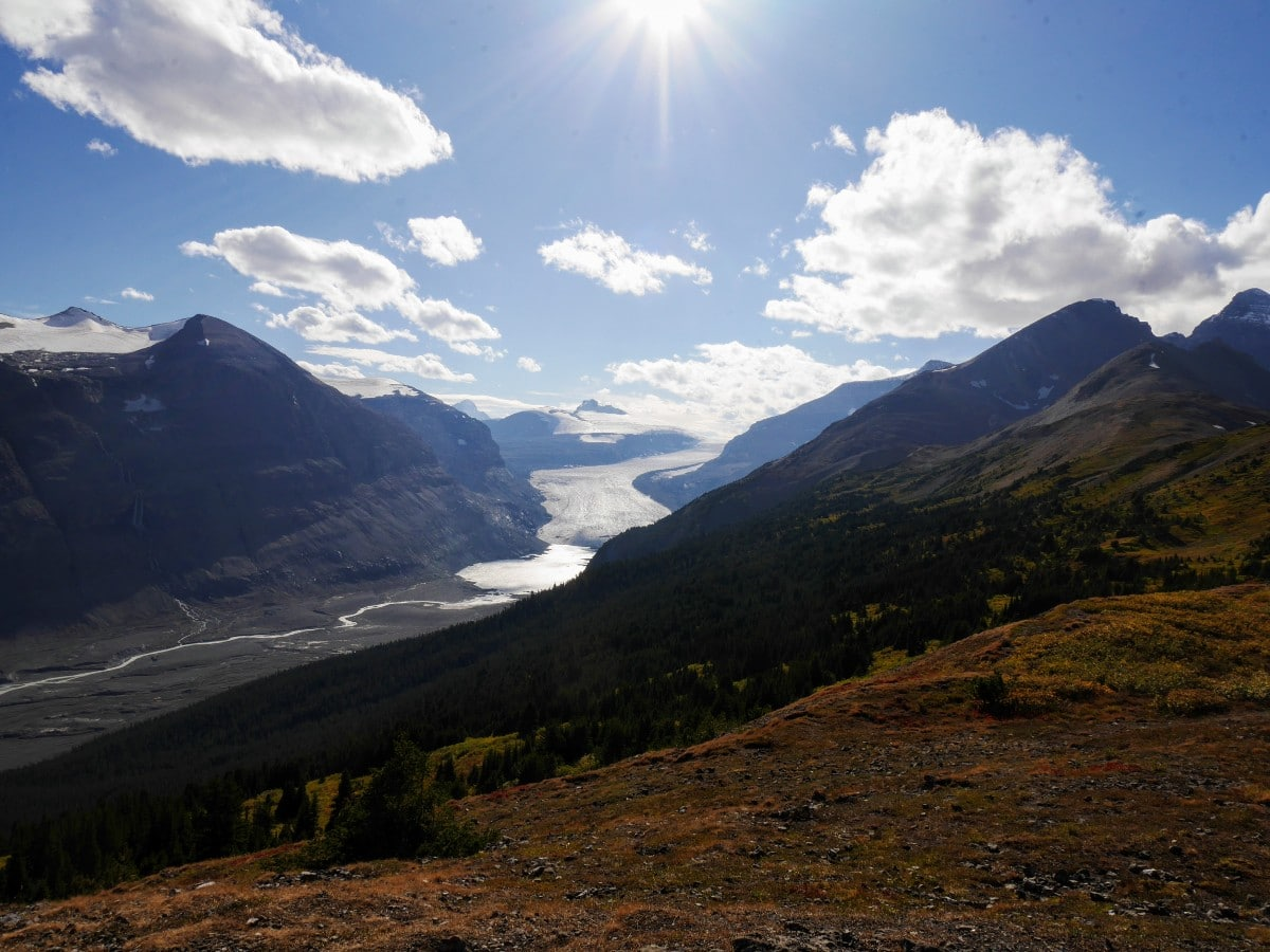 Saskatchewan Glacier and forefield on the Parker Ridge Trail Hike from the Icefields Parkway near Banff National Park