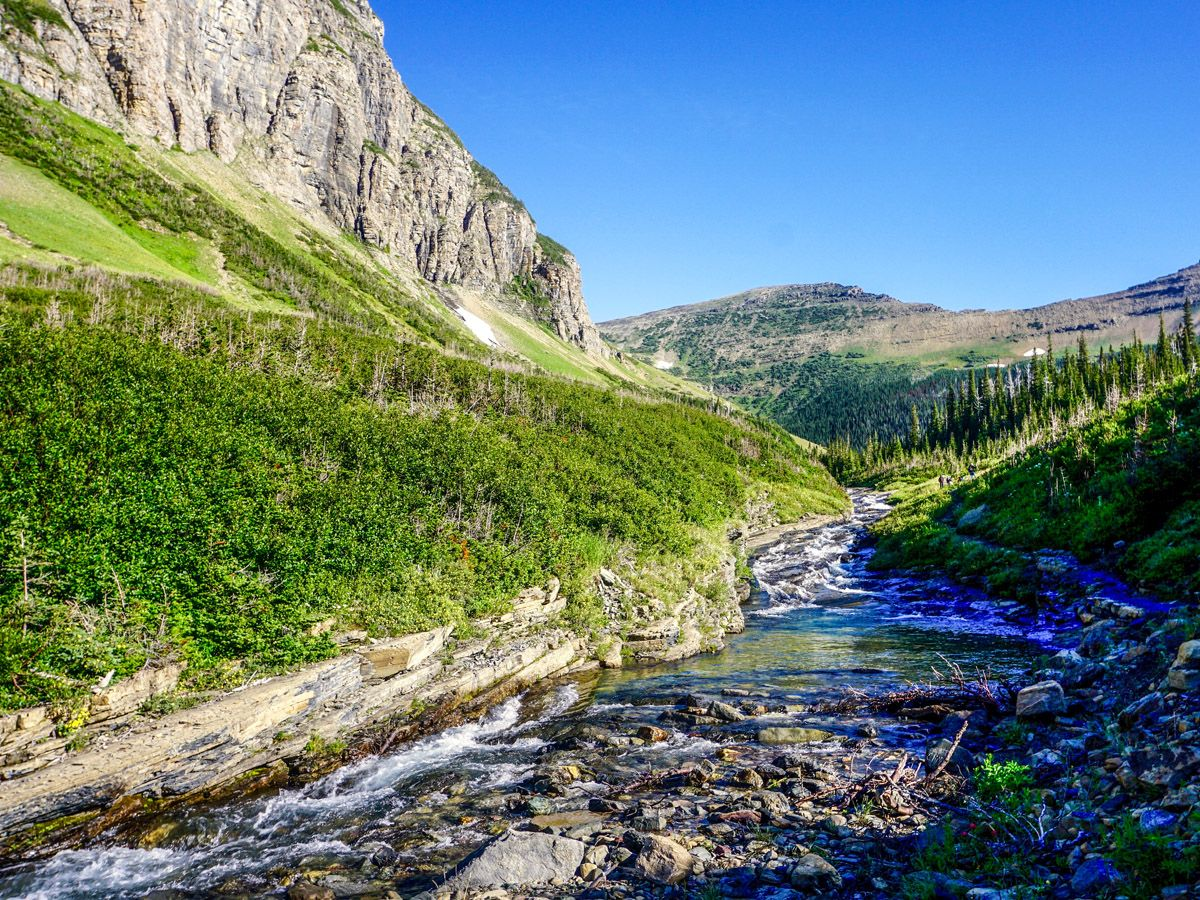 River at Piegan Pass Hike in Glacier National Park
