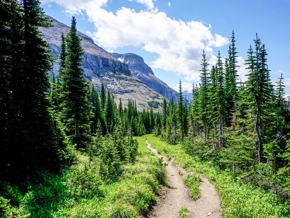 Piegan Pass Trail in Glacier National Park