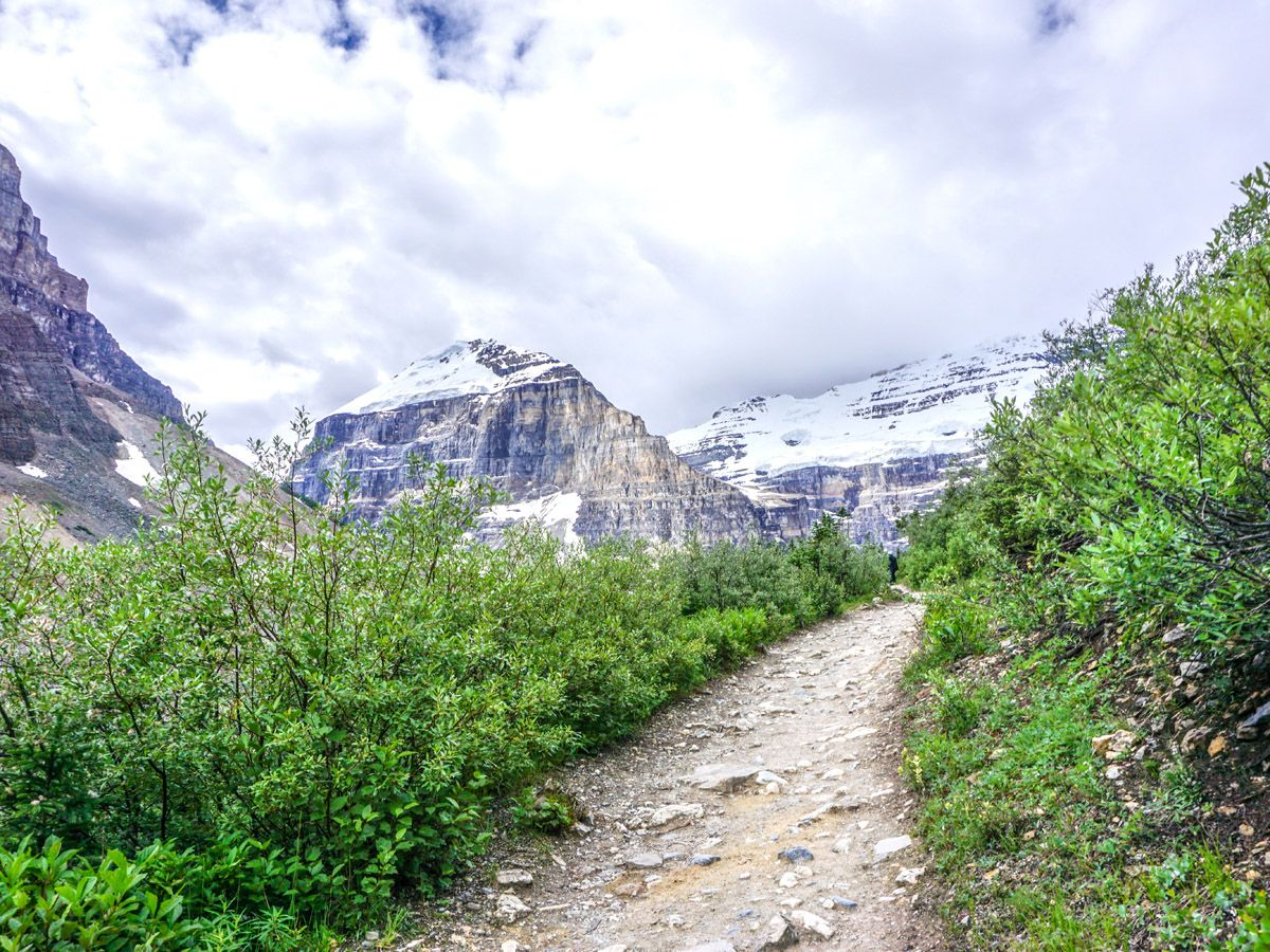 Trail of the Plain of the 6 Glaciers Hike near Lake Louise, Banff National Park, Alberta