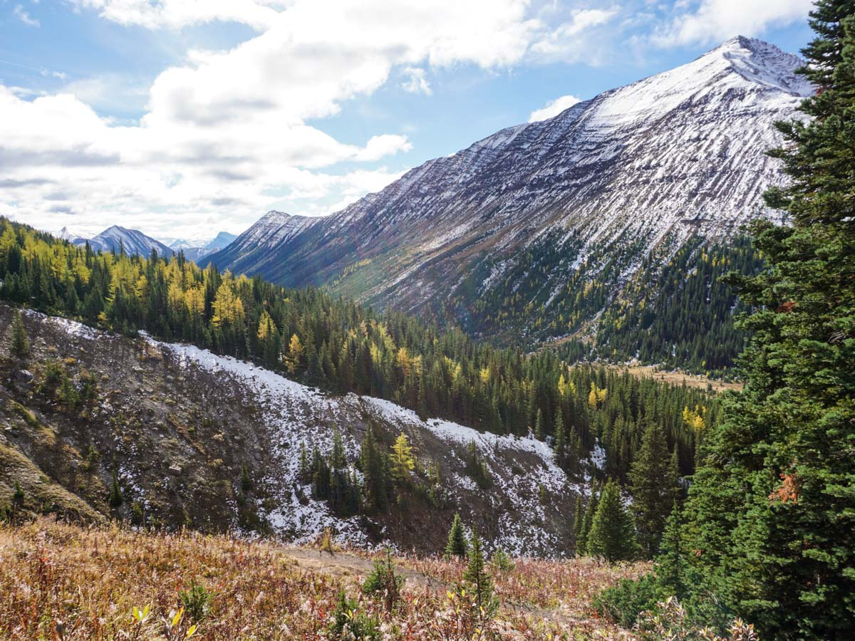 Autumn colors on the Ptarmigan Cirque Hike in Kananaskis, near Canmore