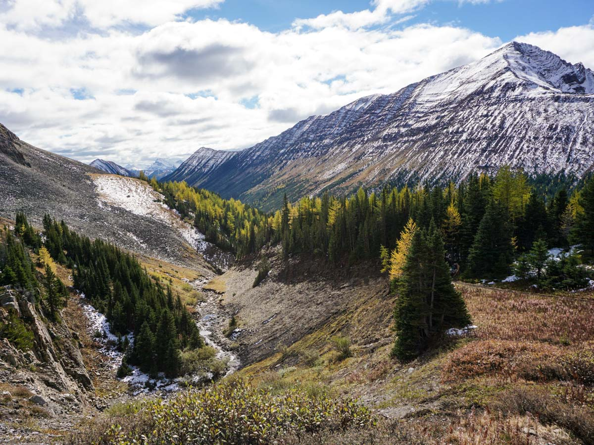 Trail down from the Ptarmigan Cirque Hike in Kananaskis, near Canmore
