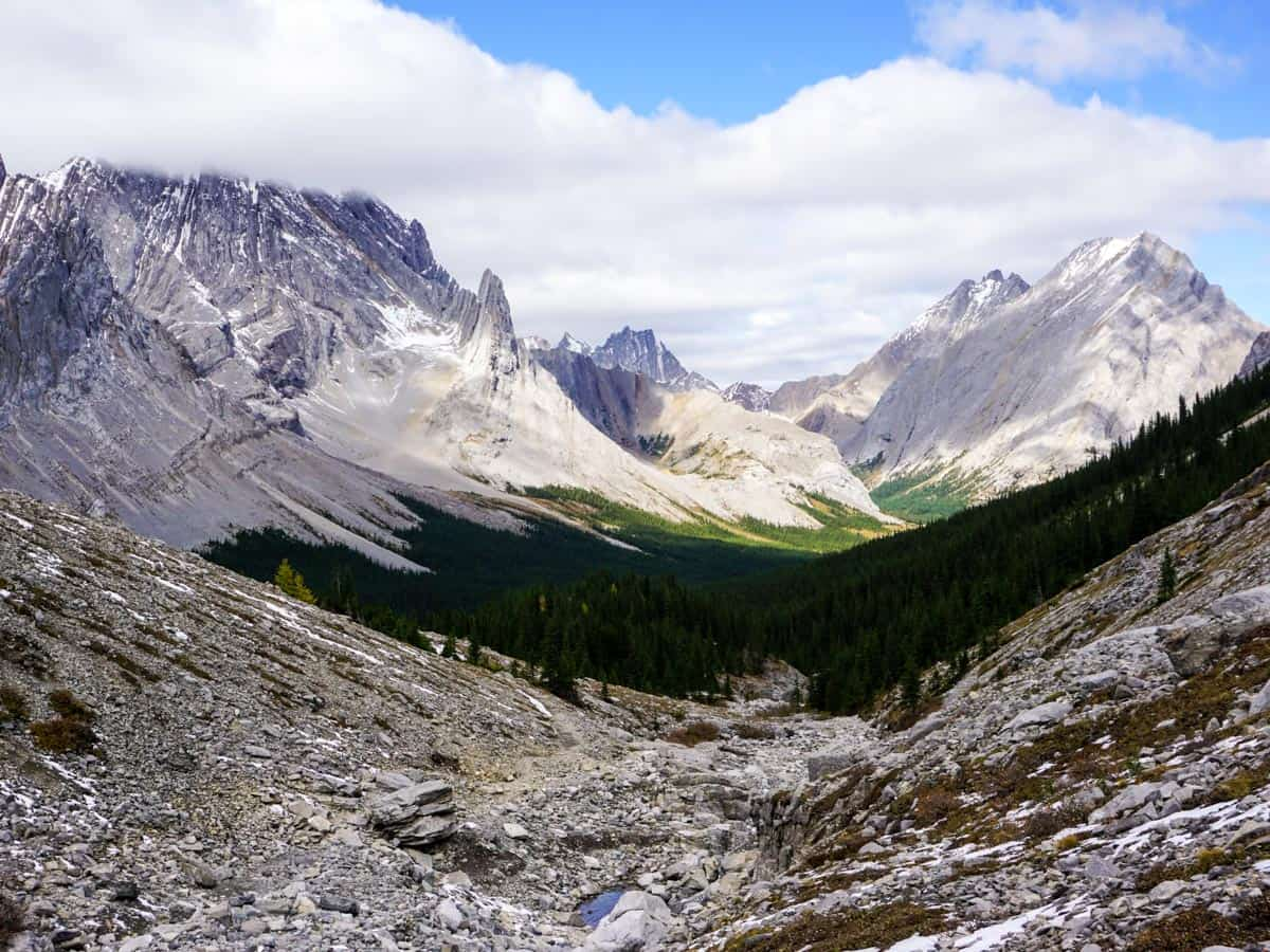 Views towards the Opal Range from the Rae Glacier Hike in Kananaskis, near Canmore