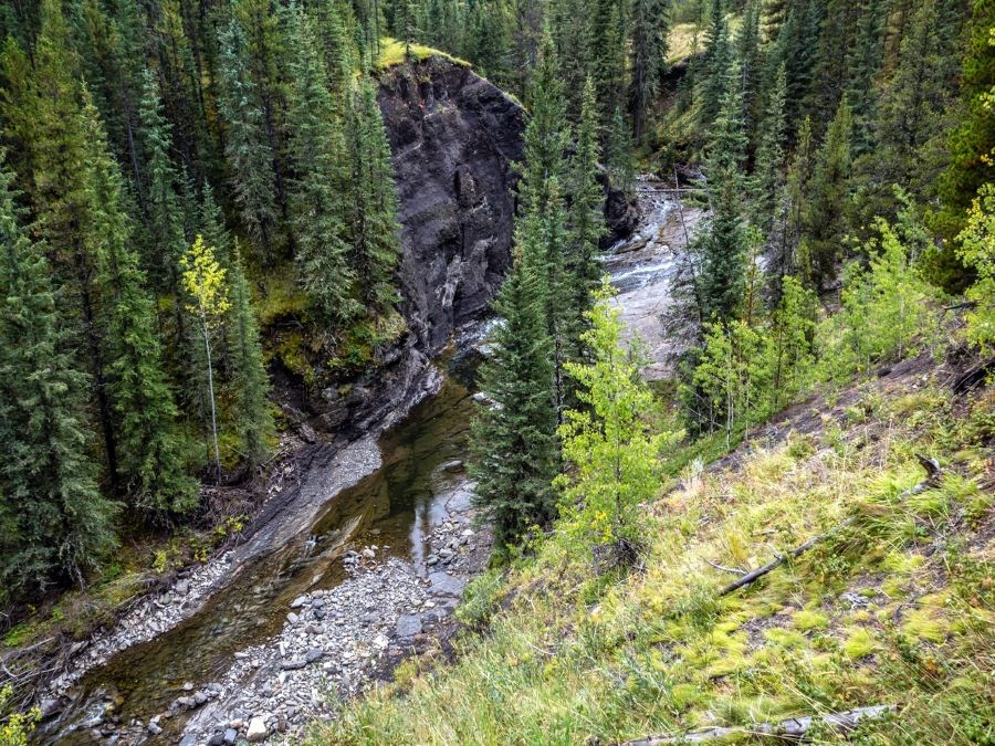 Beautiful creek on the Volcano Ridge Hike in Sheep River Provincial Park, Kananaskis