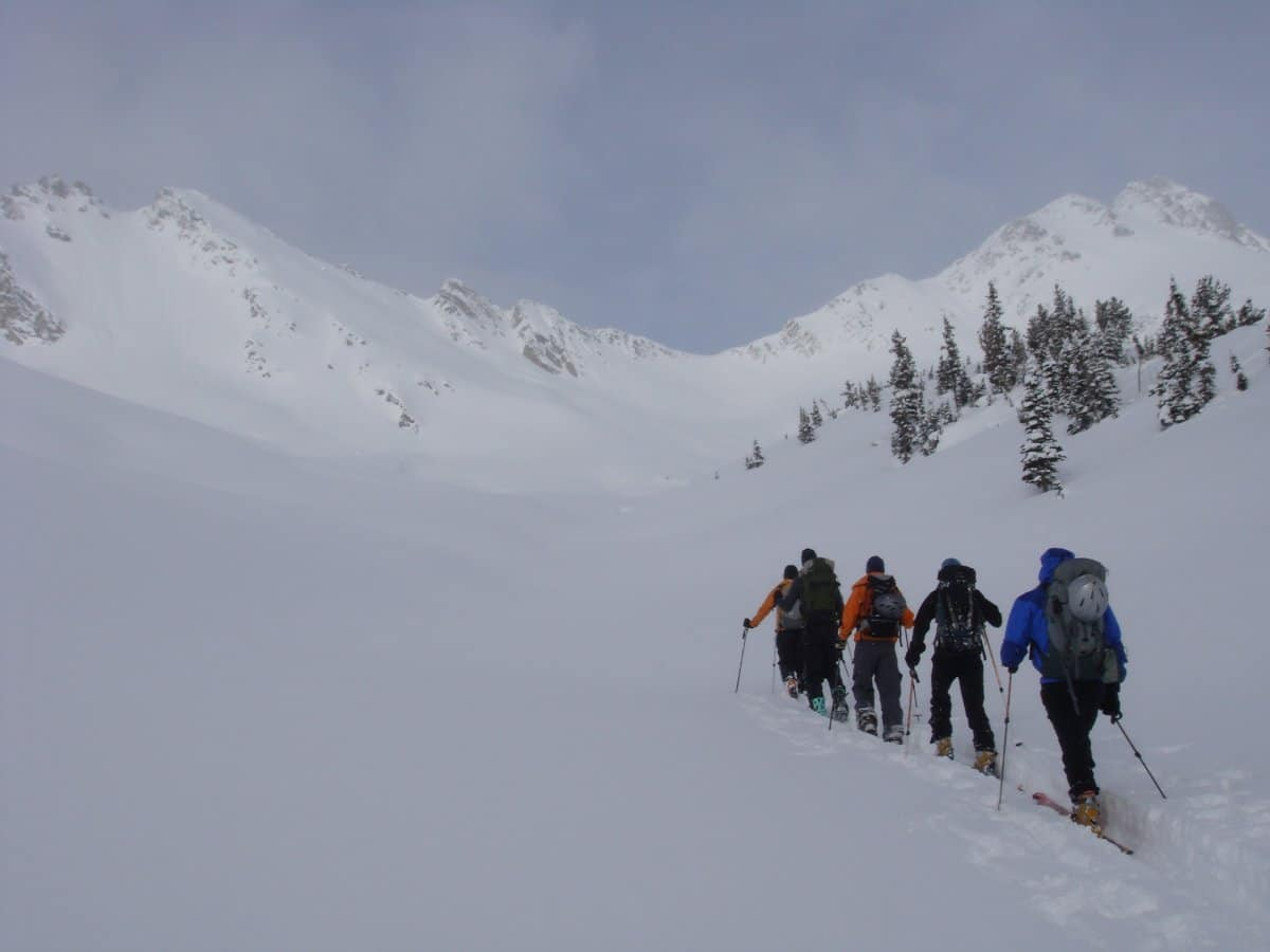 Ski Touring in Rogers Pass
