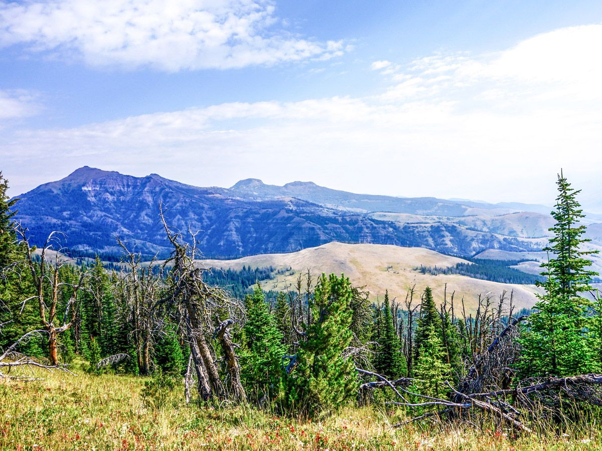 10 Best Day Hikes in Yellowstone National Park - Outdoor ... |Peak Hike Yellowstone