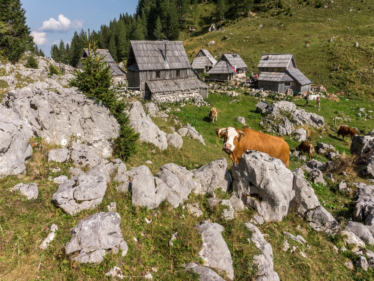 Viševnik pasture with Bregar refuge on the Valley of The Seven Lakes Hike in Julian Alps, Slovenia
