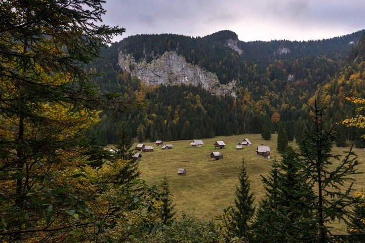 Bohinj Pastures hike is one of top 10 hikes in Julian Alps, Slovenia