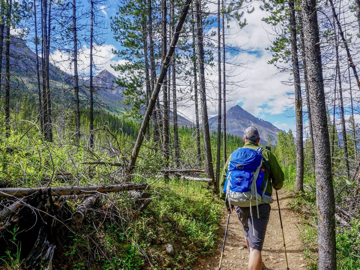 Trail of the Stanley Glacier Hike in Kootenay National Park, Canadian Rocky Mountains