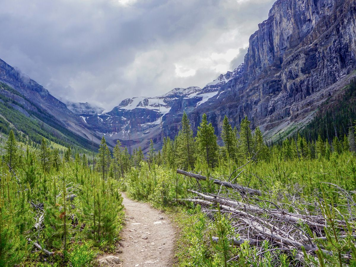 Valley on the Stanley Glacier Hike in Kootenay National Park, Canadian Rocky Mountains