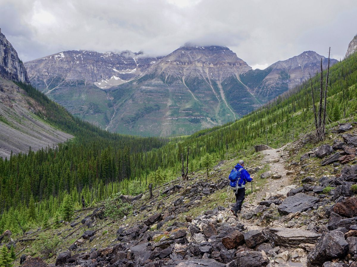 Man hiking on the Stanley Glacier Hike in Kootenay National Park, Canadian Rocky Mountains