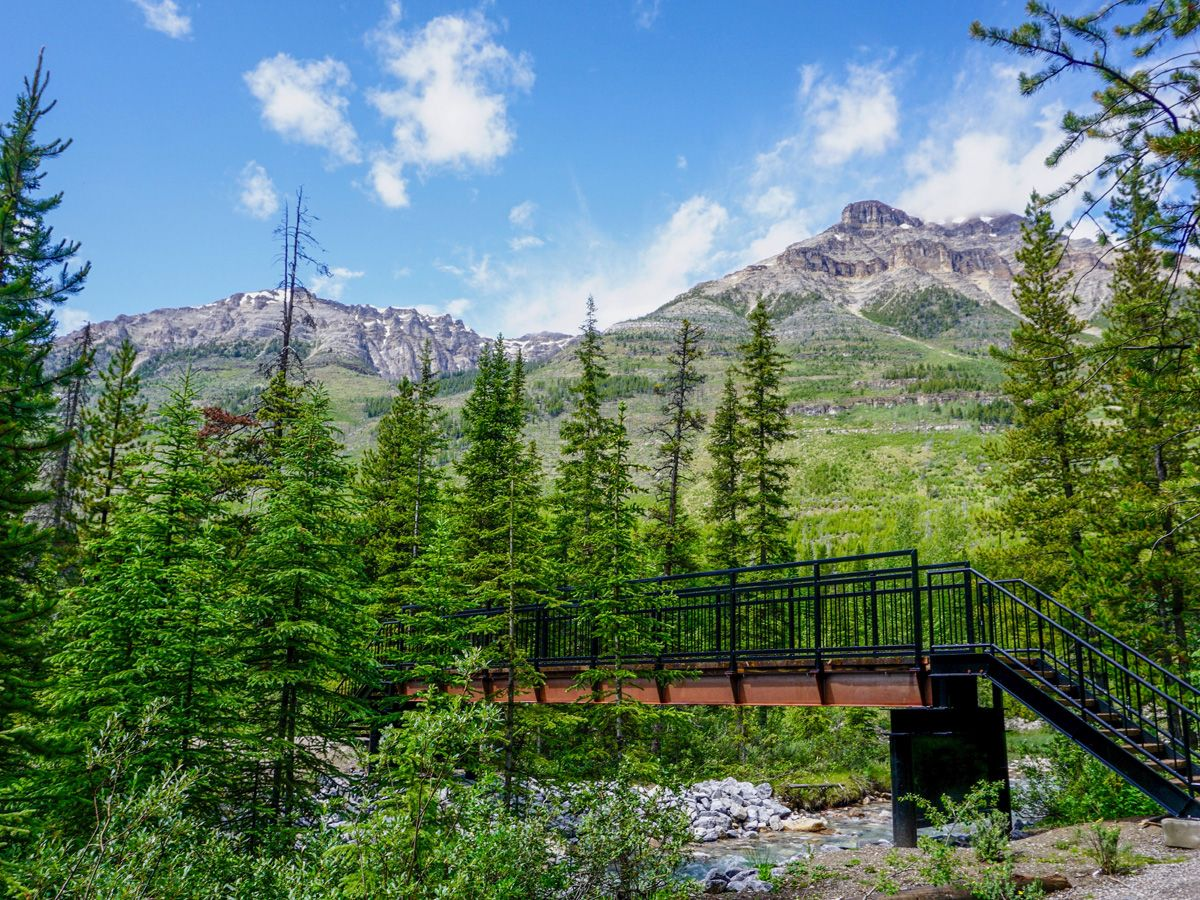 Footbridge along the trail on the Stanley Glacier Hike in Kootenay National Park, Canadian Rocky Mountains