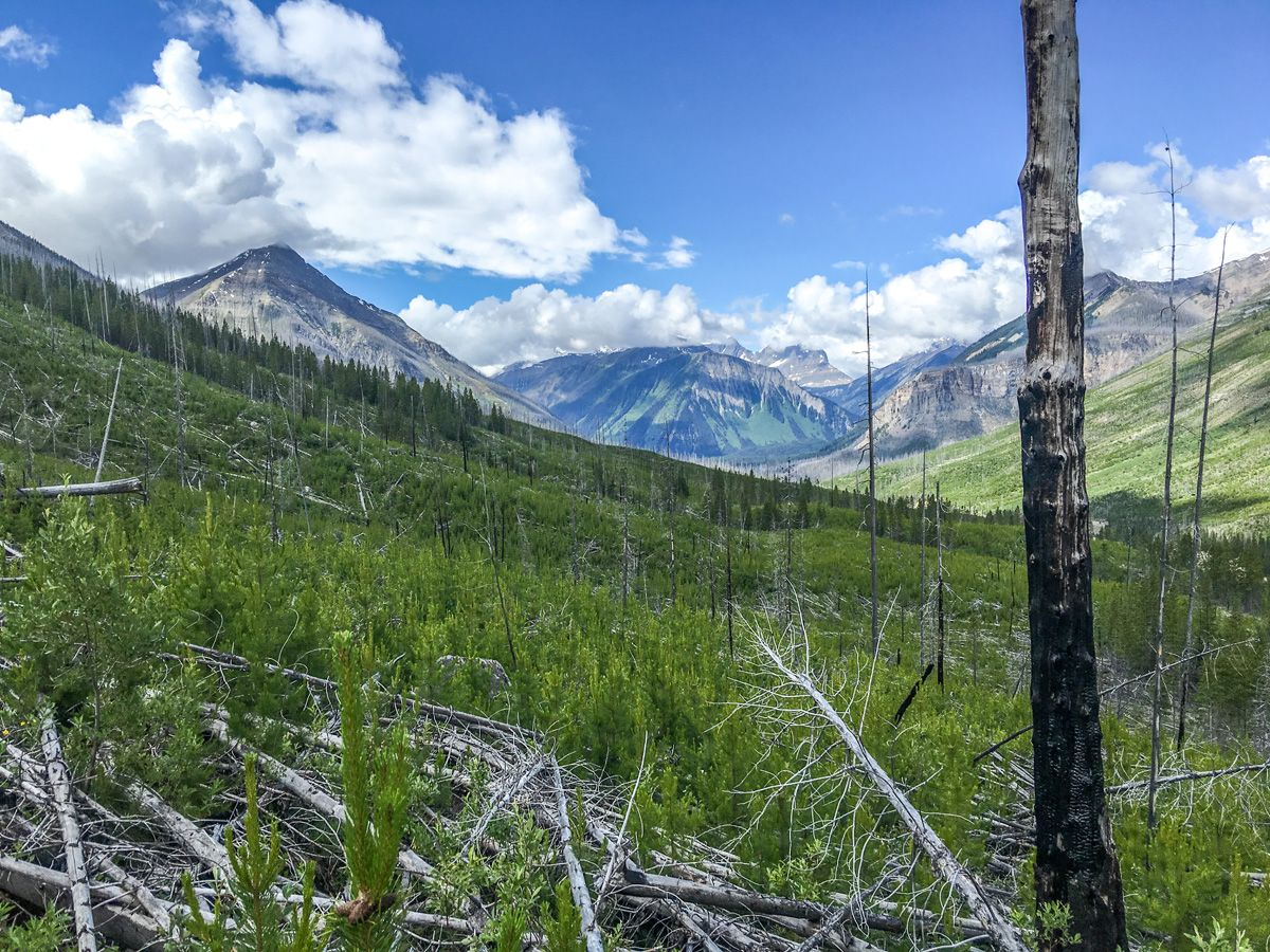 Landscape on the Stanley Glacier Hike in Kootenay National Park, Canadian Rocky Mountains