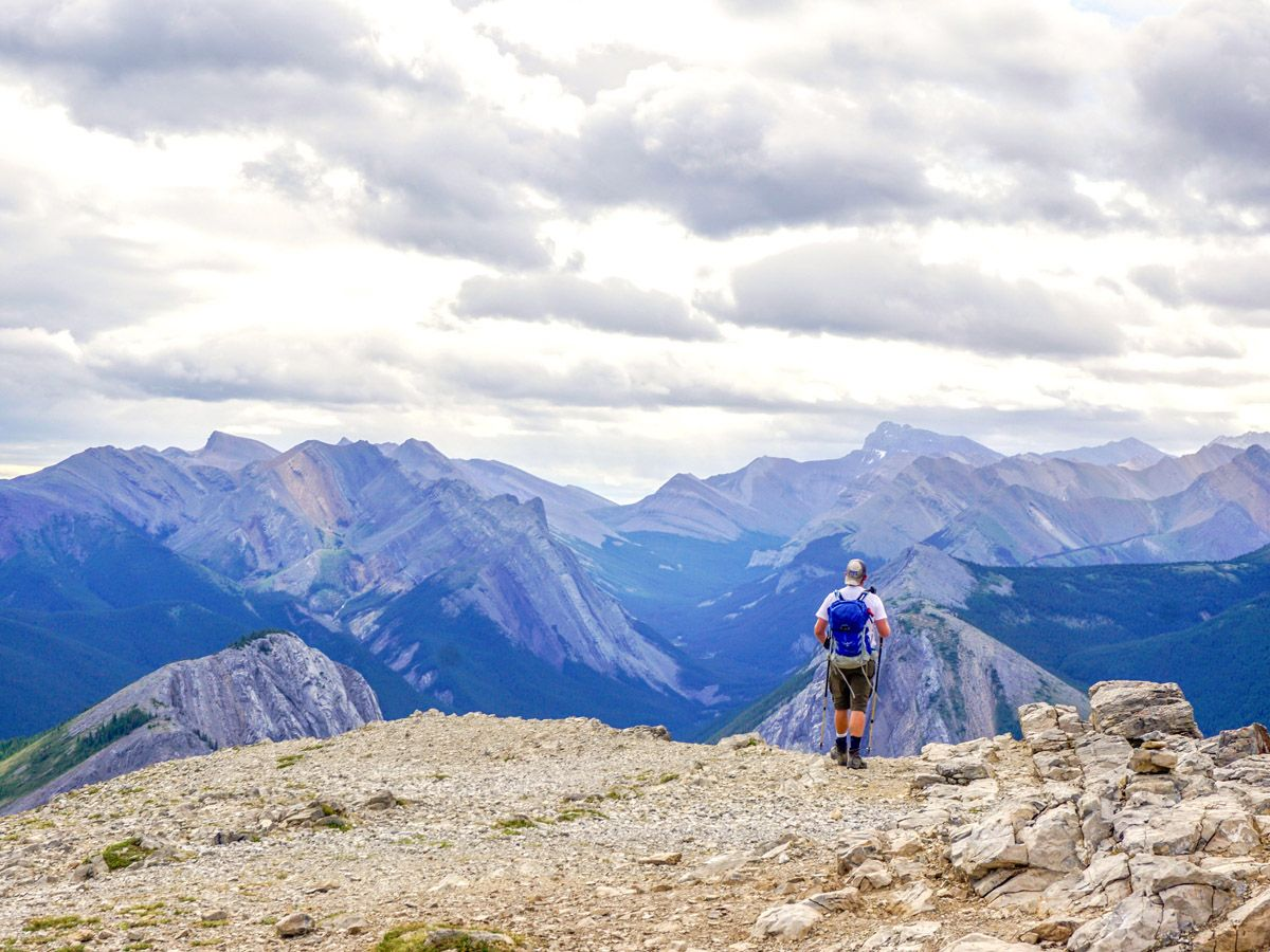 Man hiking at Whistlers Mountain and Indian Ridge as seen from the Sulphur Skyline Hike in Jasper National Park