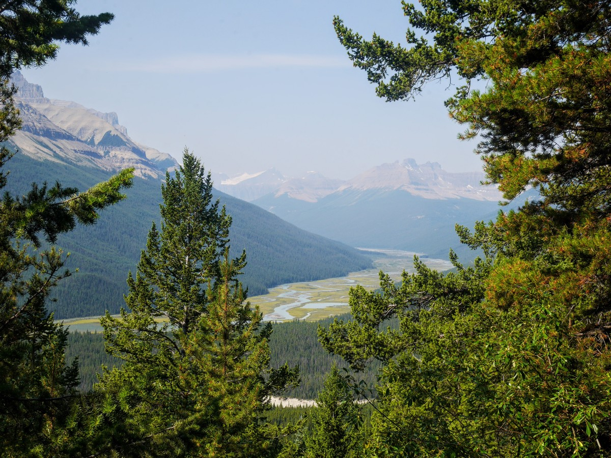 Saskatchewan River from the Sunset Viewpoint and Pass Hike from the Icefields Parkway near Banff National Park