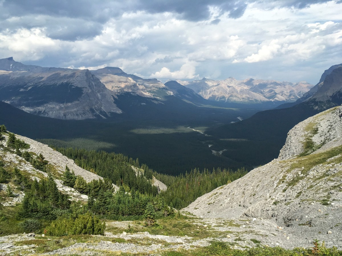 View into Cline River Valley from the Sunset Viewpoint and Pass Hike from the Icefields Parkway near Banff National Park