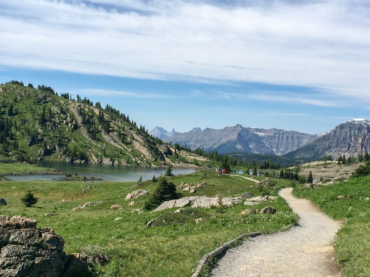 Sunshine Meadows Hike (Rock Isle, Grizzly and Larix Lake)