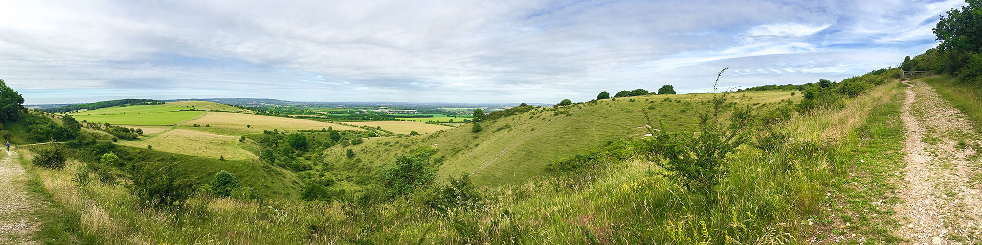 Panorama from the Ashridge Boundary Trail hike in Chiltern Hills, England