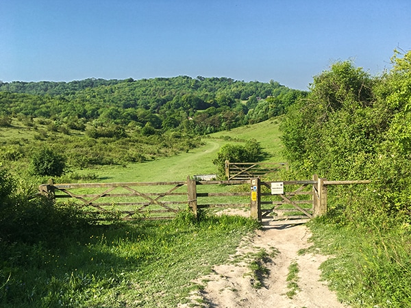 Views from the Brush Hill & White Leaf Nature Reserve hike in Chiltern Hills, England