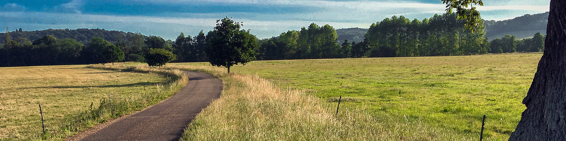 Panorama of the Hambledon Lock hike in Chiltern Hills, England